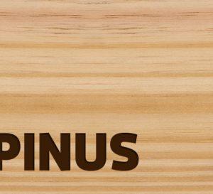 Santa Luzia – Rodapés e Guarnições – Linha Engenharia Pinus
